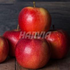 Ароматизатор для сауни Harvia Яблуко 0,5 л. Фото 2